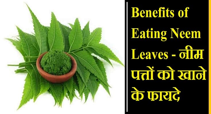 Benefits of Eating Neem Leaves