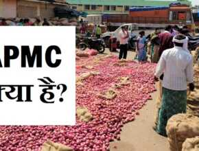 APMC full form in Hindi